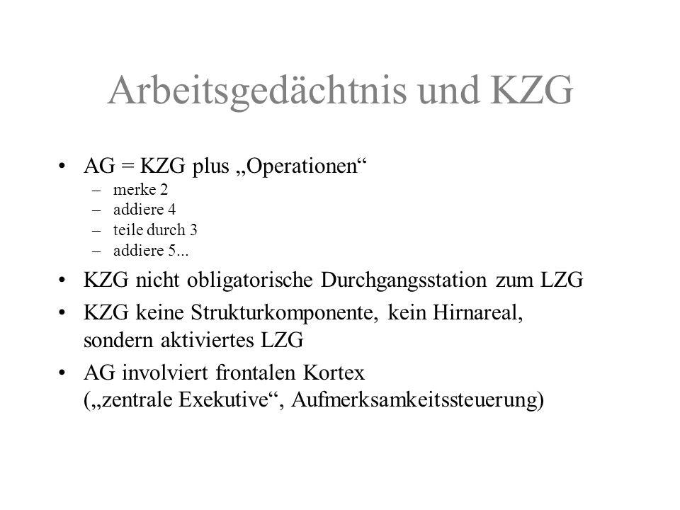 Arbeitsgedächtnis und KZG AG = KZG plus Operationen –merke 2 –addiere 4 –teile durch 3 –addiere 5... KZG nicht obligatorische Durchgangsstation zum LZ