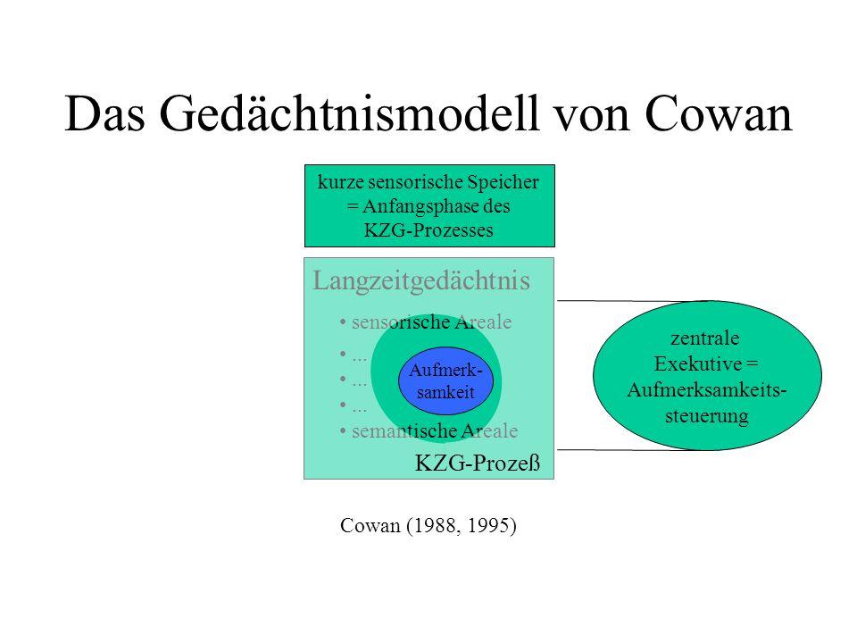 Das Gedächtnismodell von Cowan Langzeitgedächtnis sensorische Areale... semantische Areale kurze sensorische Speicher = Anfangsphase des KZG-Prozesses