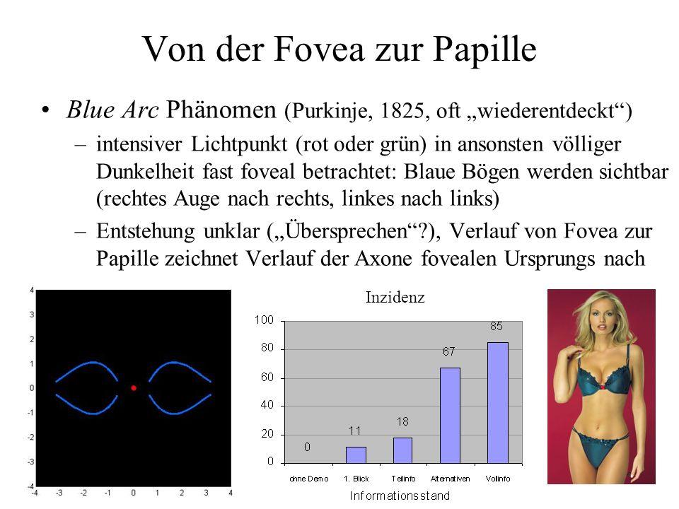 Von der Fovea zur Papille Blue Arc Phänomen (Purkinje, 1825, oft wiederentdeckt) –intensiver Lichtpunkt (rot oder grün) in ansonsten völliger Dunkelheit fast foveal betrachtet: Blaue Bögen werden sichtbar (rechtes Auge nach rechts, linkes nach links) –Entstehung unklar (Übersprechen?), Verlauf von Fovea zur Papille zeichnet Verlauf der Axone fovealen Ursprungs nach Inzidenz