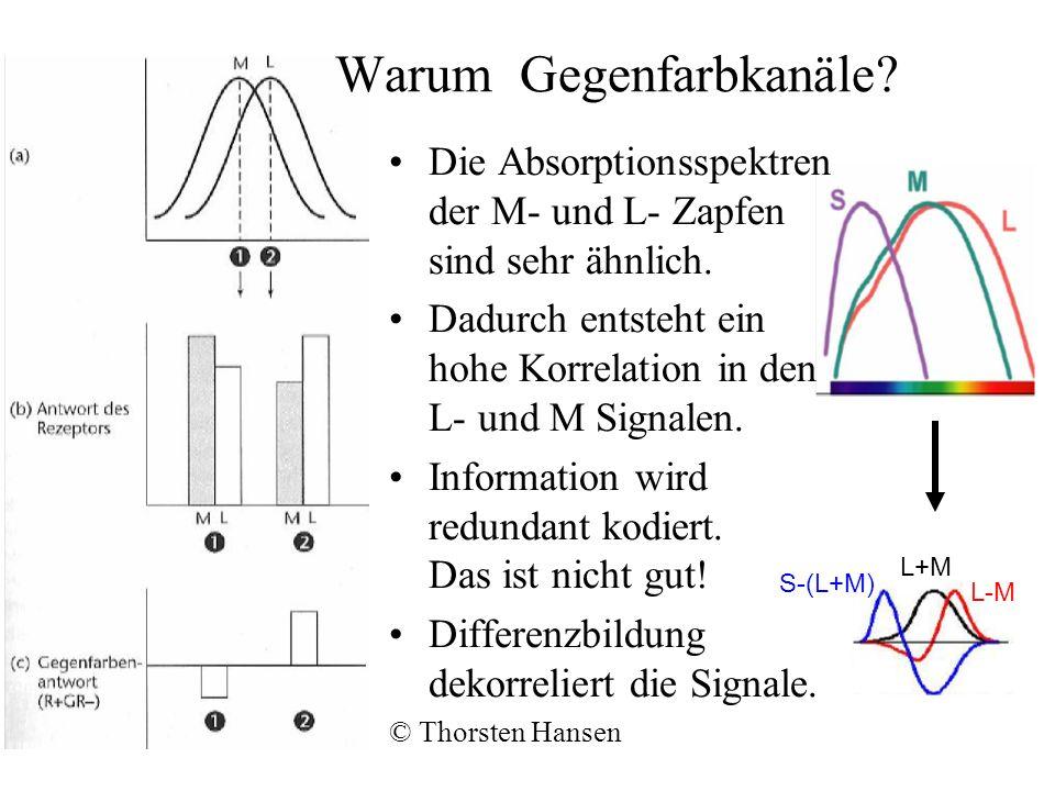 Warum Gegenfarbkanäle.Die Absorptionsspektren der M- und L- Zapfen sind sehr ähnlich.