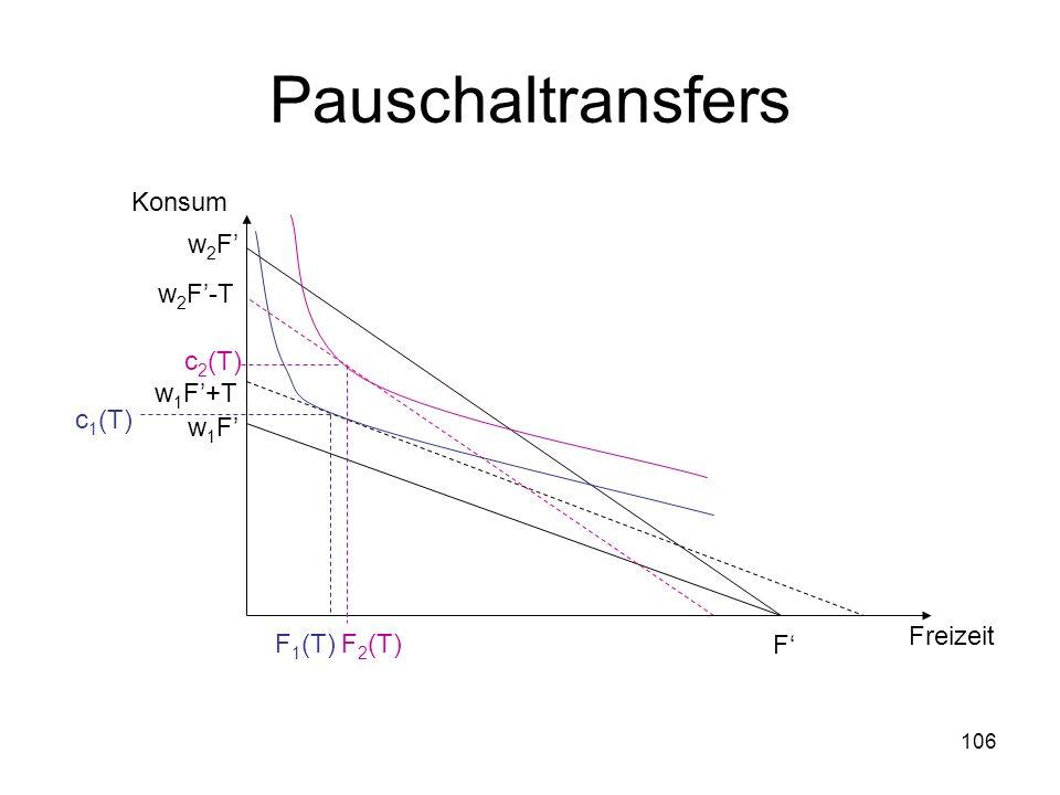 106 Pauschaltransfers F w2Fw2F w 2 F-T w1Fw1F w 1 F+T Freizeit Konsum c 2 (T) F 2 (T) c 1 (T) F 1 (T)
