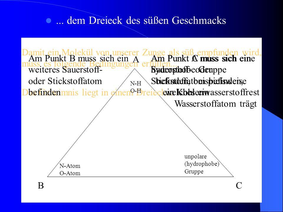 Das Dreieck des süßen Geschmacks am Beispiel des Sorbitmoleküls A : Sauerstoffatom, welches ein Wasserstoffatom trägt B : weiteres Sauerstoffatom C : hydrophober Kohlenwasserstoffrest A B C A B C