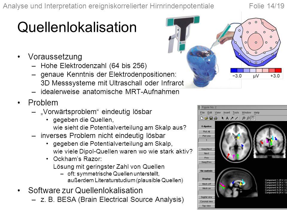 Analyse und Interpretation ereigniskorrelierter HirnrindenpotentialeFolie 14/19 Quellenlokalisation Voraussetzung –Hohe Elektrodenzahl (64 bis 256) –g