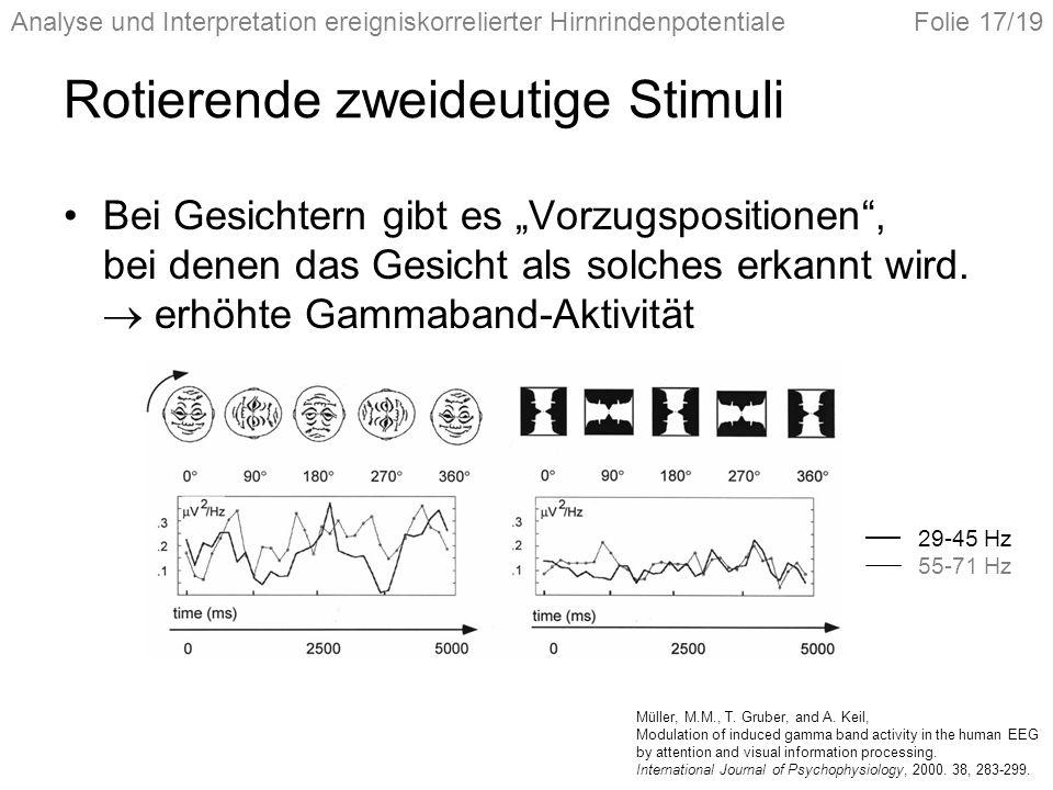 Analyse und Interpretation ereigniskorrelierter HirnrindenpotentialeFolie 17/19 Rotierende zweideutige Stimuli Bei Gesichtern gibt es Vorzugspositione