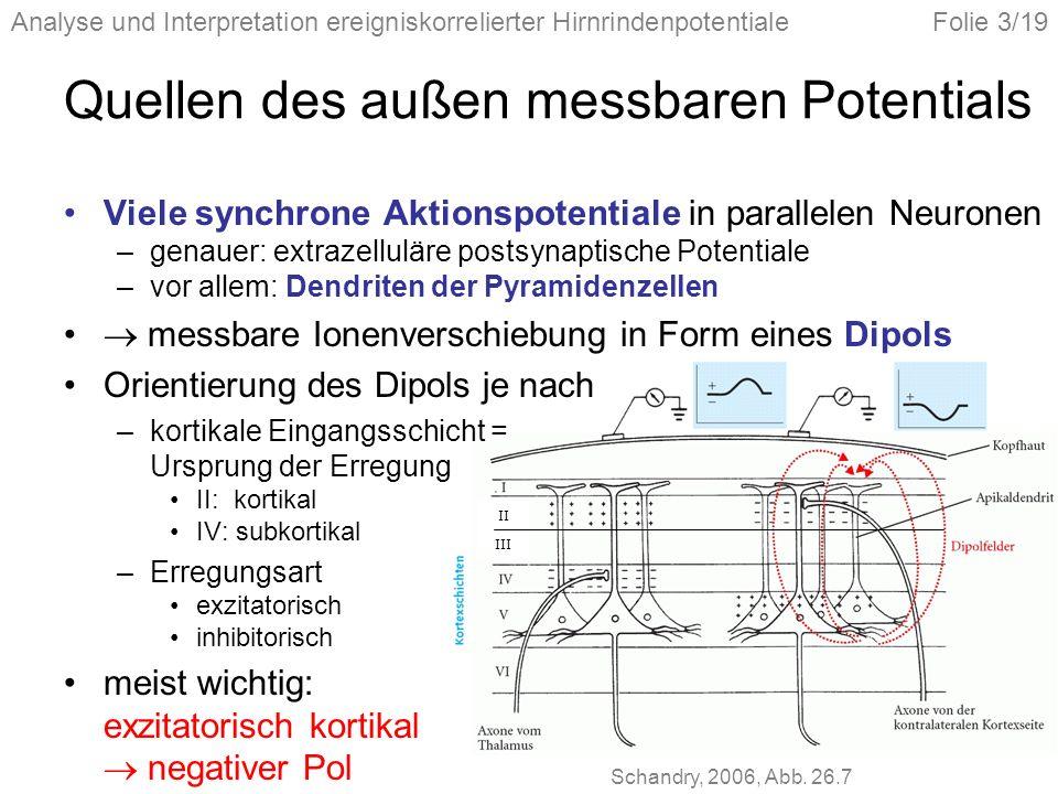 Analyse und Interpretation ereigniskorrelierter HirnrindenpotentialeFolie 3/19 Quellen des außen messbaren Potentials Viele synchrone Aktionspotentiale in parallelen Neuronen –genauer: extrazelluläre postsynaptische Potentiale –vor allem: Dendriten der Pyramidenzellen messbare Ionenverschiebung in Form eines Dipols Orientierung des Dipols je nach –kortikale Eingangsschicht = Ursprung der Erregung II: kortikal IV: subkortikal –Erregungsart exzitatorisch inhibitorisch meist wichtig: exzitatorisch kortikal negativer Pol II III Schandry, 2006, Abb.