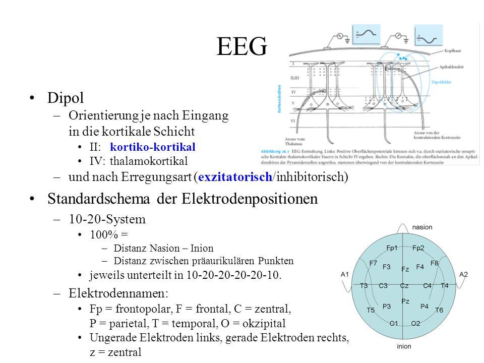 Spontanaktivität Frequenzbänder –Delta:0,5-4 Hz20-200 µVTiefschlaf –Theta:5-7 Hz5-100 µVÜbergang zum Einschlafen –Alpha:8-13 Hz5-100 µVentspannter Wachzustand –Beta:14-30 Hz2-20 µVAktivität, Belastung –Gamma:30-100 Hz2-10 µVWahrnehmungsvorgänge