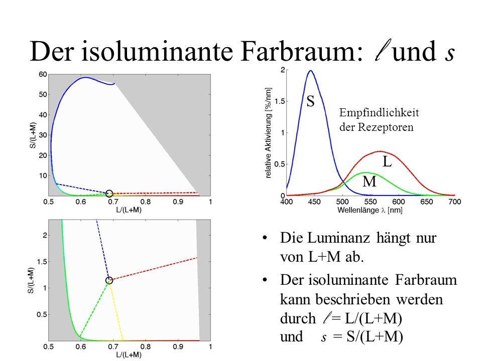 Empfindlichkeit der Rezeptoren Die Luminanz hängt nur von L+M ab. Der isoluminante Farbraum kann beschrieben werden durch l = L/(L+M) und s = S/(L+M)