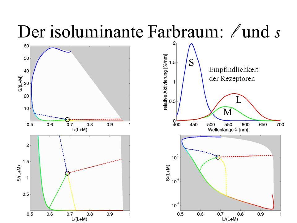 Empfindlichkeit der Rezeptoren Der isoluminante Farbraum: l und s S M L