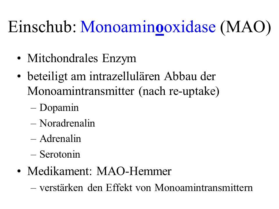 Einschub: Monoaminooxidase (MAO) Mitchondrales Enzym beteiligt am intrazellulären Abbau der Monoamintransmitter (nach re-uptake) –Dopamin –Noradrenali