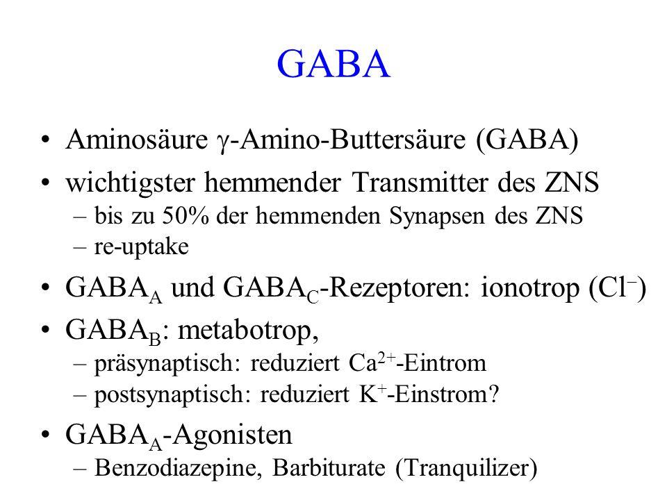 GABA Aminosäure -Amino-Buttersäure (GABA) wichtigster hemmender Transmitter des ZNS –bis zu 50% der hemmenden Synapsen des ZNS –re-uptake GABA A und G