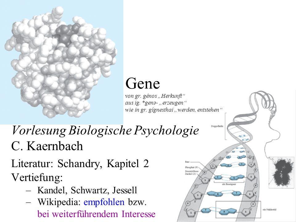 Gene von gr. génos Herkunft aus ig. *genə- erzeugen wie in gr. gígnesthai werden, entstehen Vorlesung Biologische Psychologie C. Kaernbach Literatur: