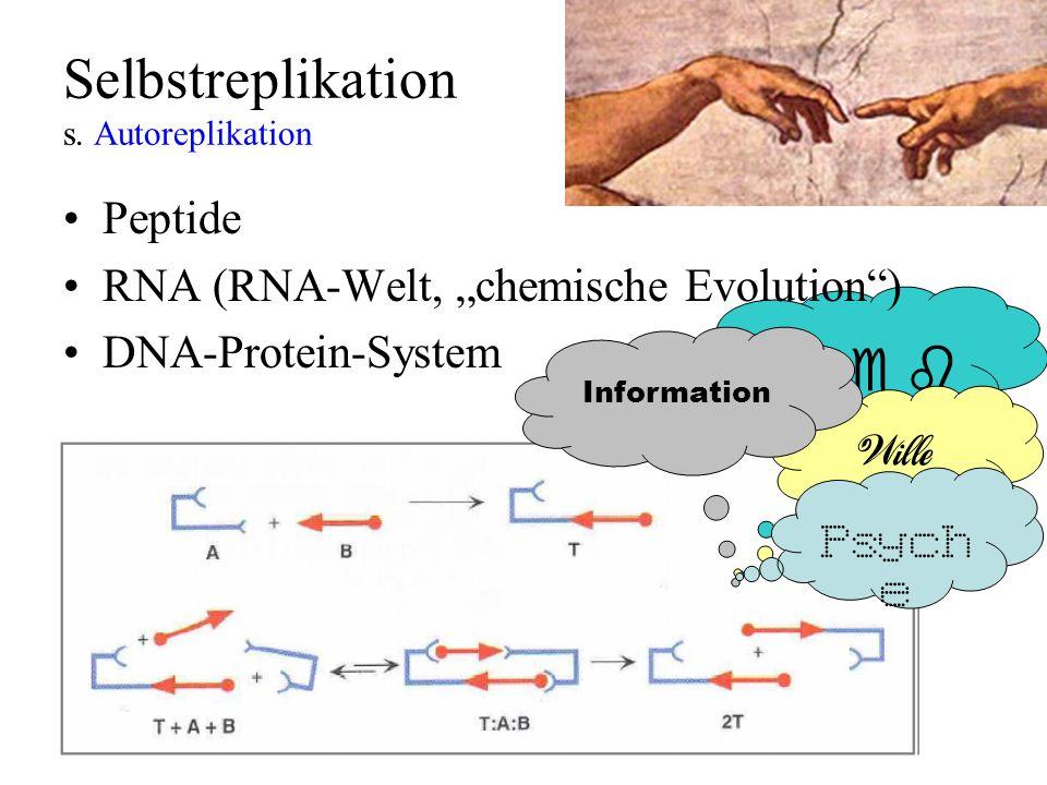 Selbstreplikation s. Autoreplikation Wille Information Peptide RNA (RNA-Welt, chemische Evolution) DNA-Protein-System Psych e