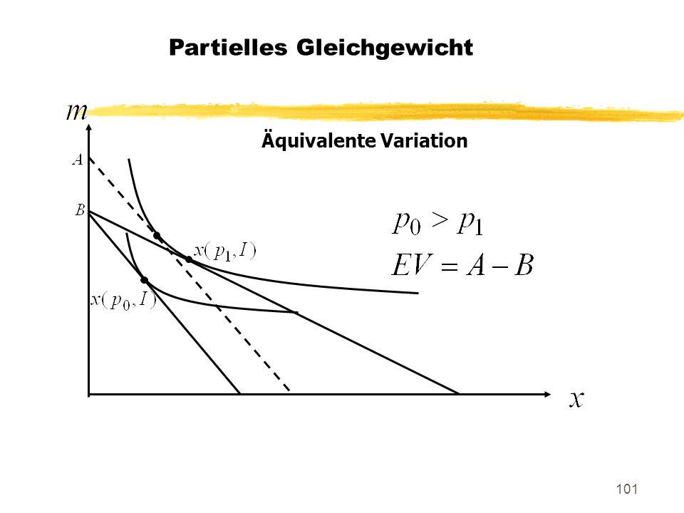 101 Äquivalente Variation Partielles Gleichgewicht
