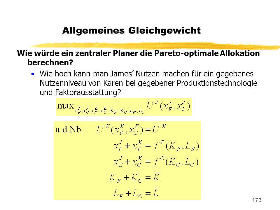 173 Wie würde ein zentraler Planer die Pareto-optimale Allokation berechnen? Wie hoch kann man James Nutzen machen für ein gegebenes Nutzenniveau von