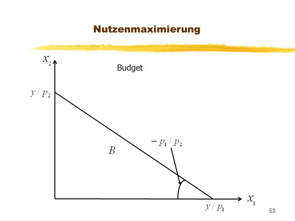 53 Budget Nutzenmaximierung