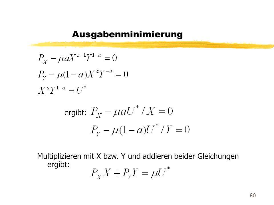 80 ergibt: Multiplizieren mit X bzw. Y und addieren beider Gleichungen ergibt: Ausgabenminimierung