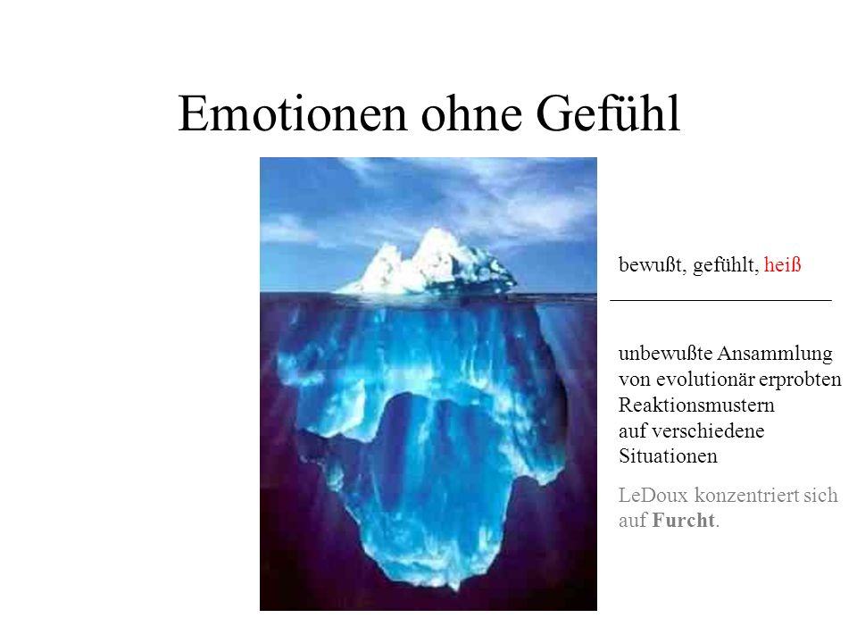 Emotionen ohne Gefühl unbewußte Ansammlung von evolutionär erprobten Reaktionsmustern auf verschiedene Situationen LeDoux konzentriert sich auf Furcht.
