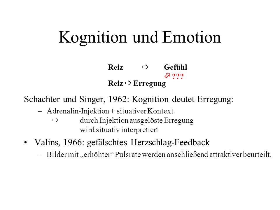 Kognition und Emotion Reiz Gefühl ??.