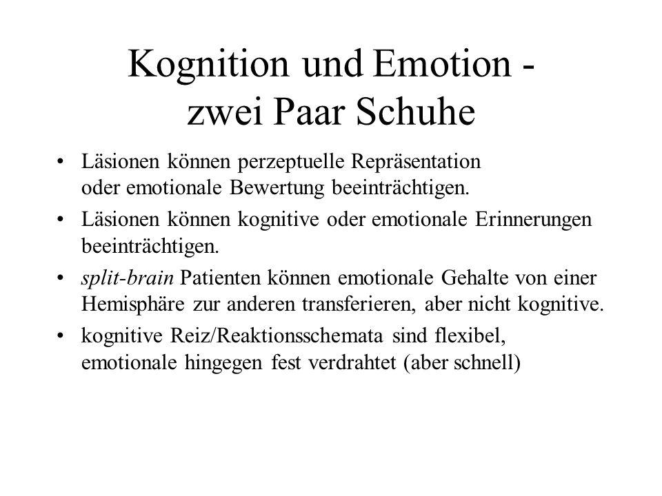 Kognition 2 und Emotion Schachter und Singer, 1962: Kognition deutet Erregung: Reiz Bewertung Erregung Kognition Gefühl Adrenalin-Injektion + situativ