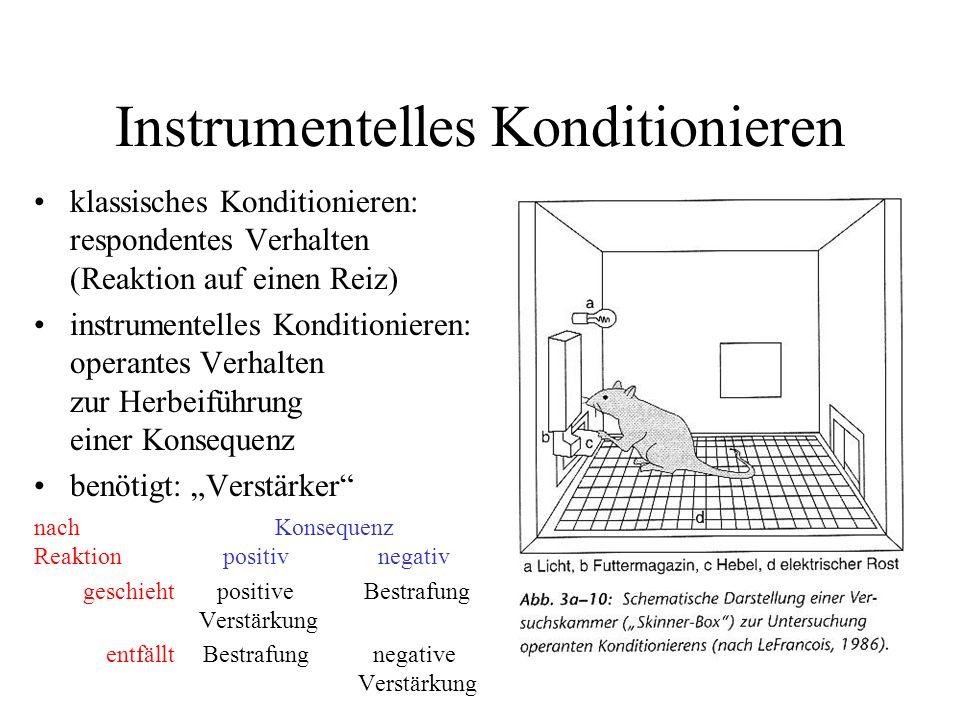 Instrumentelles Konditionieren klassisches Konditionieren: respondentes Verhalten (Reaktion auf einen Reiz) instrumentelles Konditionieren: operantes
