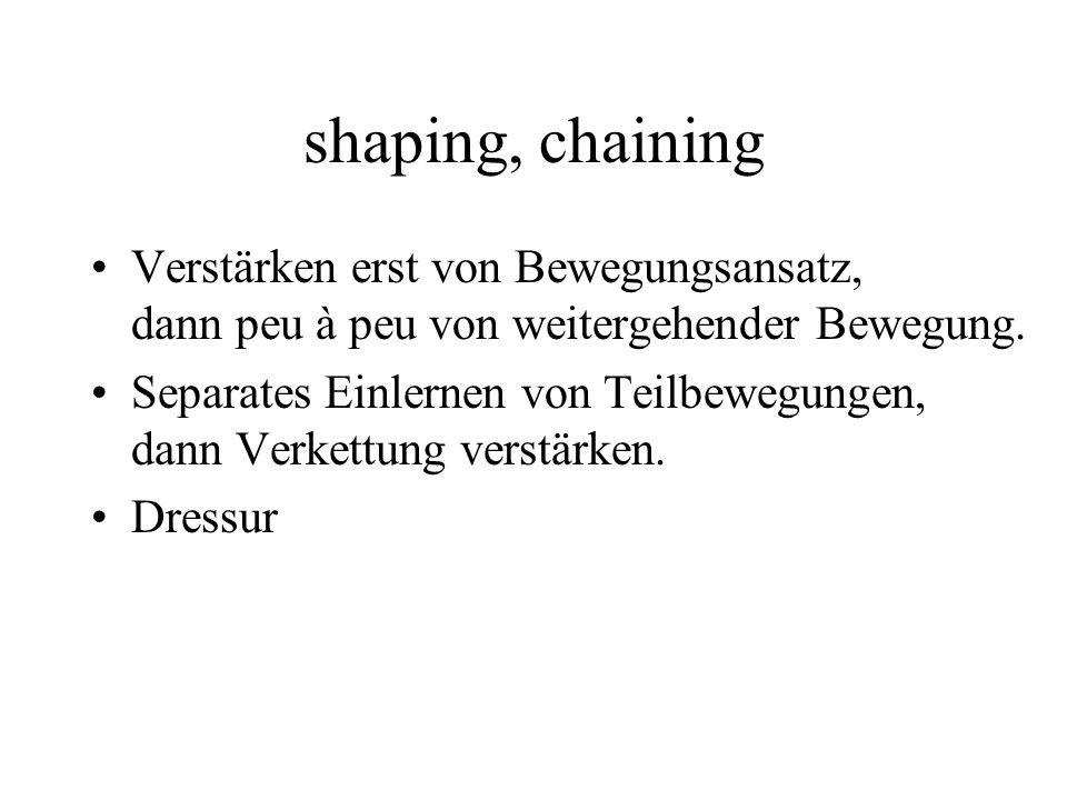 shaping, chaining Verstärken erst von Bewegungsansatz, dann peu à peu von weitergehender Bewegung. Separates Einlernen von Teilbewegungen, dann Verket