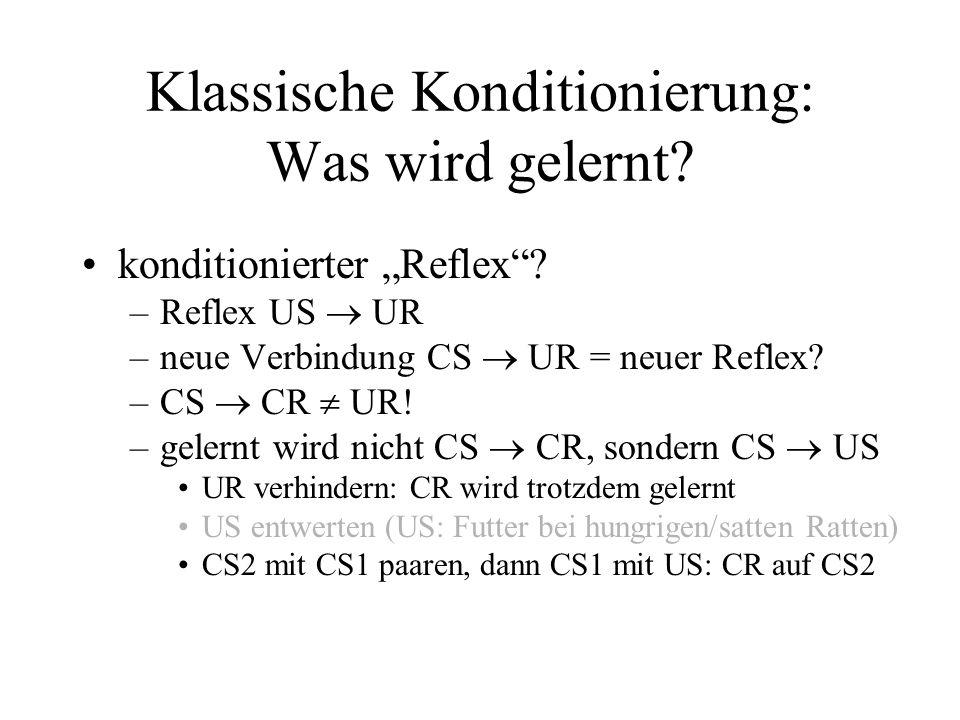 Klassische Konditionierung: Was wird gelernt? konditionierter Reflex? –Reflex US UR –neue Verbindung CS UR = neuer Reflex? –CS CR UR! –gelernt wird ni
