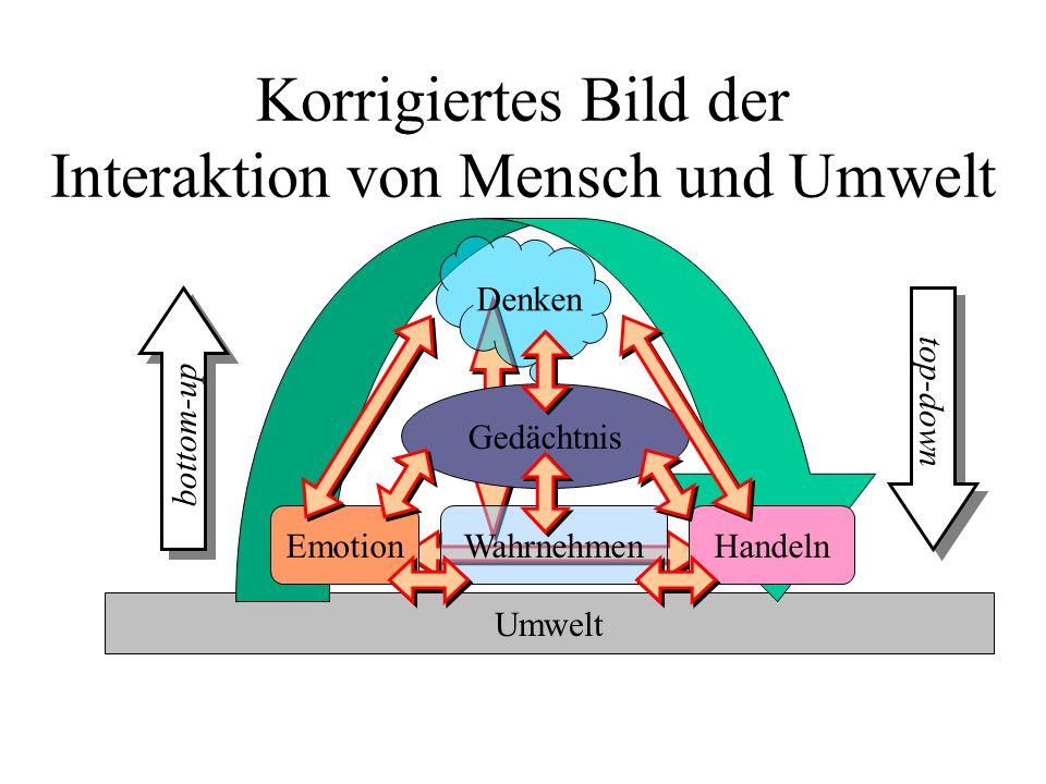 Korrigiertes Bild der Interaktion von Mensch und Umwelt Umwelt Denken Gedächtnis top-down bottom-up WahrnehmenHandelnEmotion