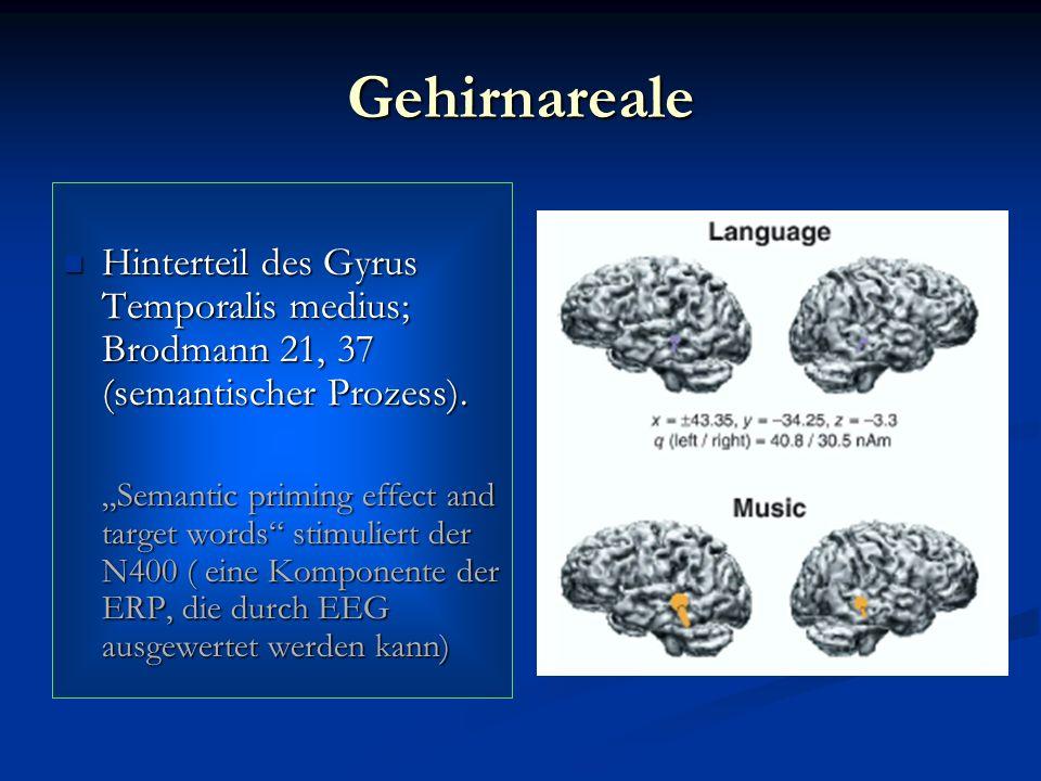 Gehirnareale Hinterteil des Gyrus Temporalis medius; Brodmann 21, 37 (semantischer Prozess). Hinterteil des Gyrus Temporalis medius; Brodmann 21, 37 (