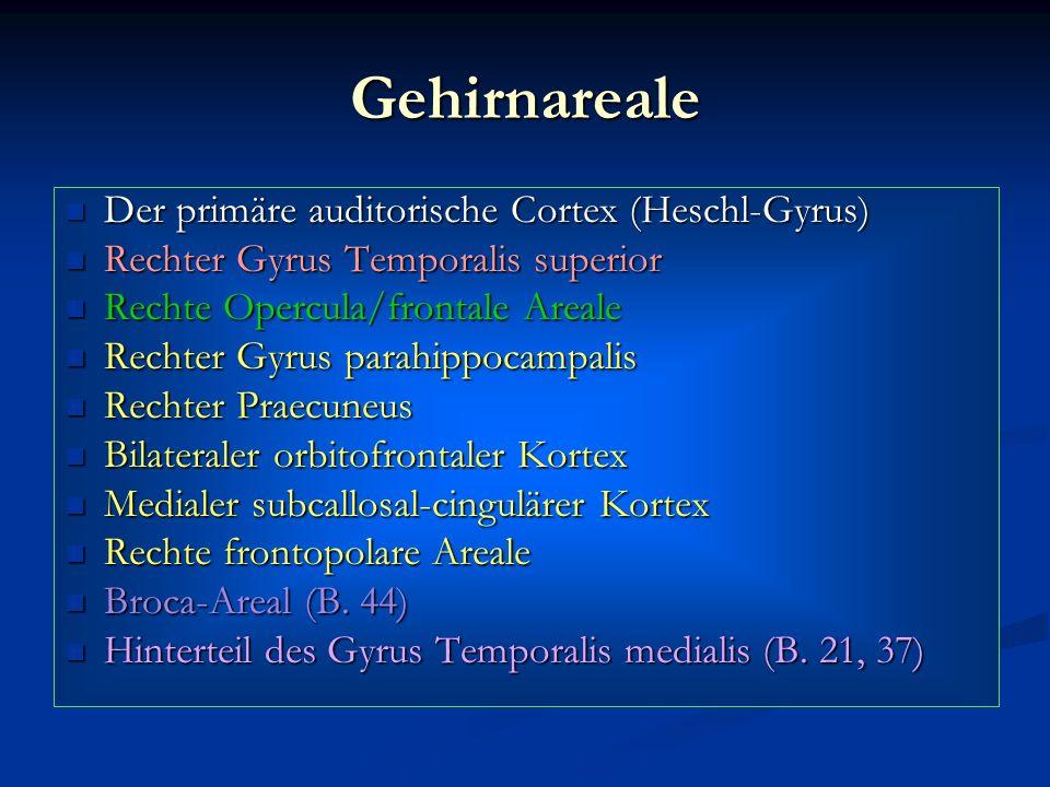 Gehirnareale Der primäre auditorische Cortex (Heschl-Gyrus) Der primäre auditorische Cortex (Heschl-Gyrus) Rechter Gyrus Temporalis superior Rechter G