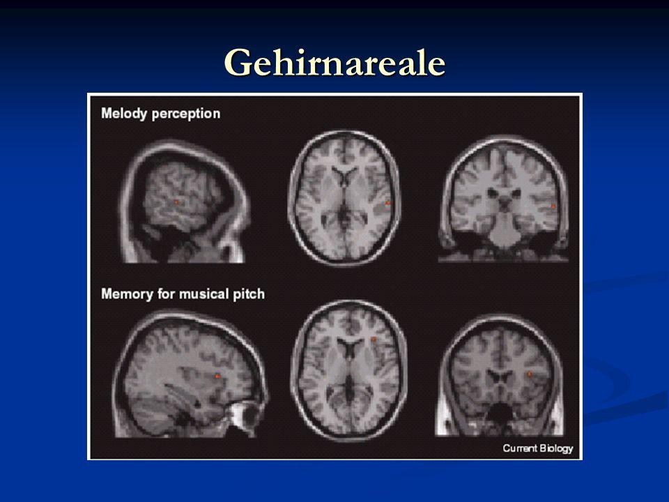 Gehirnareale Eine PET Studie zeigt Veränderungen des zerebralen Blutflusses aufgrund einer affektiven Antwort auf die Musik.