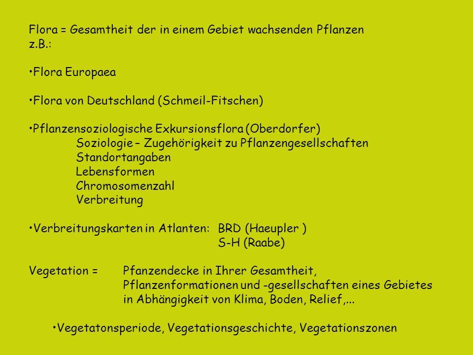 Florenreiche = Regionen mit selbständigen Vegetationscharakter und unabhängiger Entstehungsgeschichte (Phylogenese) + Ozeanisches Florenreich Quelle: Wikipedia