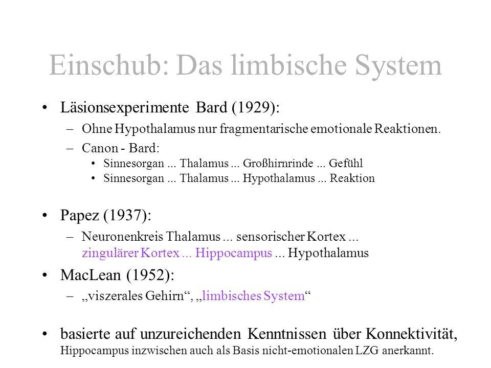 Einschub: Das limbische System Läsionsexperimente Bard (1929): –Ohne Hypothalamus nur fragmentarische emotionale Reaktionen. –Canon - Bard: Sinnesorga