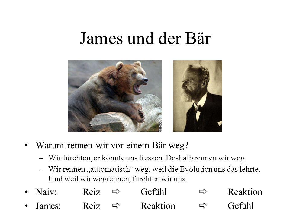 James und der Bär Warum rennen wir vor einem Bär weg? –Wir fürchten, er könnte uns fressen. Deshalb rennen wir weg. –Wir rennen automatisch weg, weil