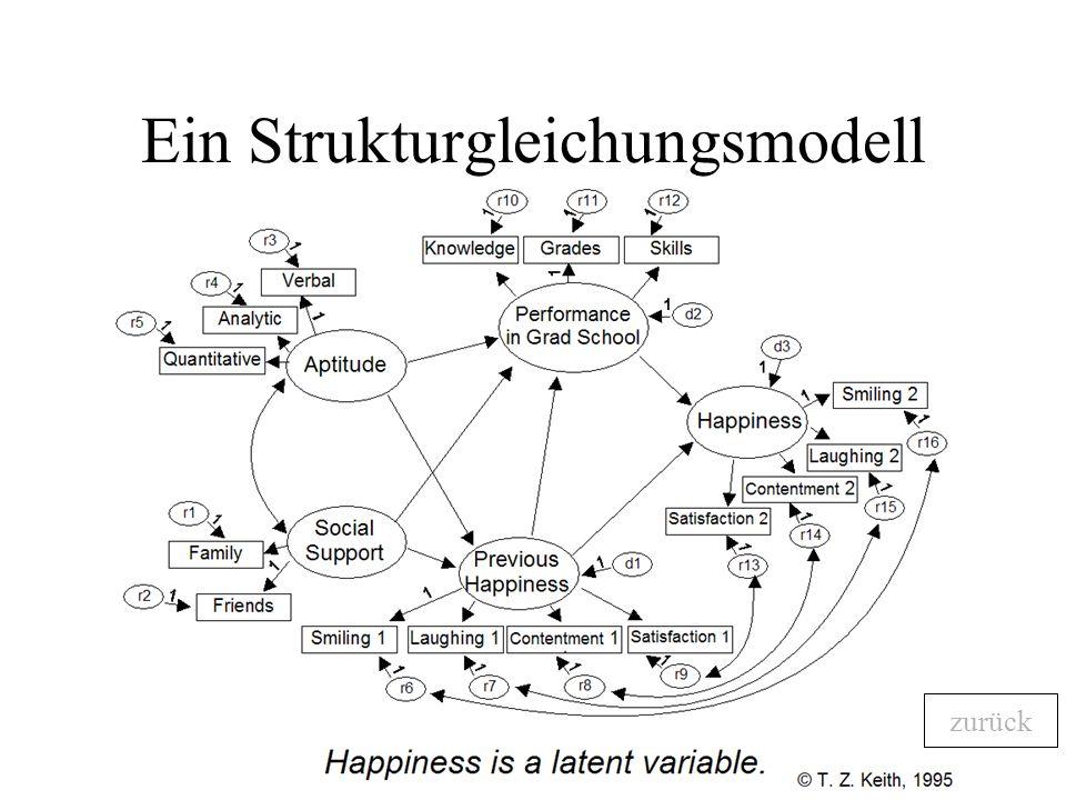 Ein Strukturgleichungsmodell zurück