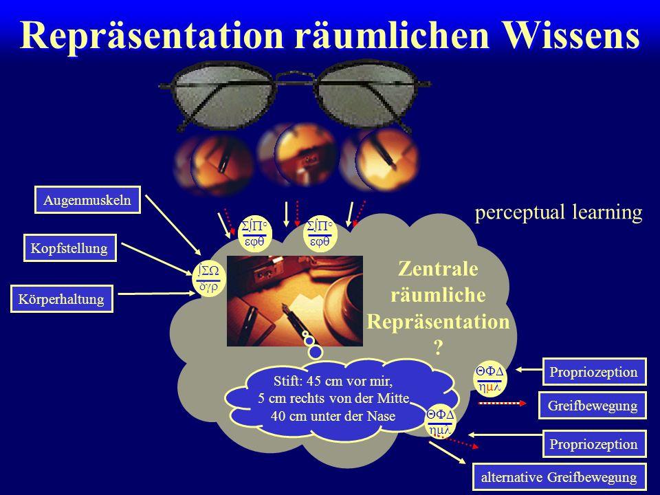 Repräsentation räumlichen Wissens Augenmuskeln Kopfstellung Körperhaltung Greifbewegung Zentrale räumliche Repräsentation ? alternative Greifbewegung