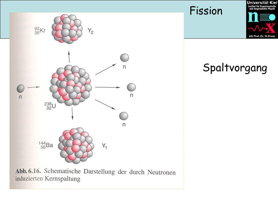 Spaltvorgang Fission
