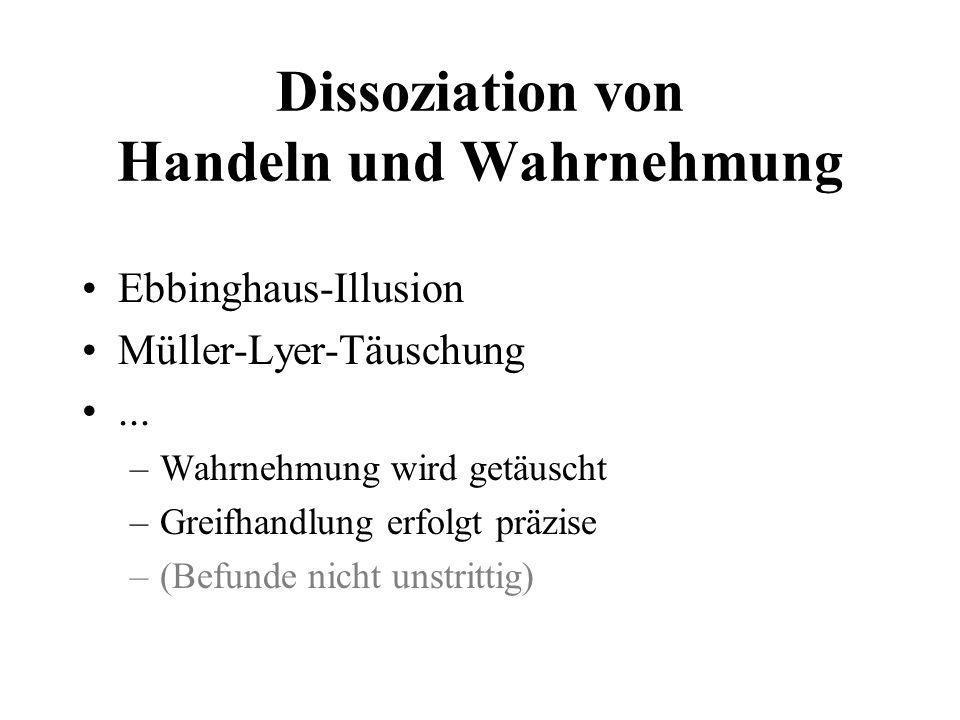Dissoziation von Handeln und Wahrnehmung Ebbinghaus-Illusion Müller-Lyer-Täuschung... –Wahrnehmung wird getäuscht –Greifhandlung erfolgt präzise –(Bef
