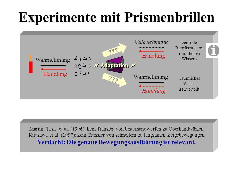 Experimente mit Prismenbrillen ؤ ت و ك ز ظ غ ن ه ى د ج Handlung Wahrnehmung Handlung Wahrnehmung ??? zentrale Repräsentation räumlichen Wissens räumli