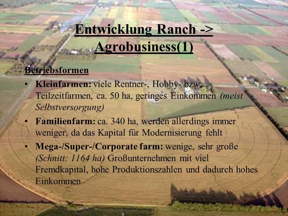 Entwicklung Ranch -> Agrobusiness(1) Betriebsformen Kleinfarmen: viele Rentner-, Hobby- bzw. Teilzeitfarmen, ca. 50 ha, geringes Einkommen (meist Selb
