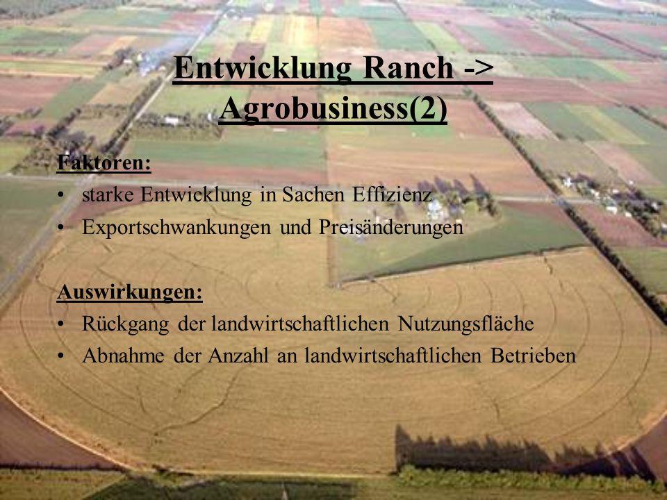 Entwicklung Ranch -> Agrobusiness(2) Faktoren: starke Entwicklung in Sachen Effizienz Exportschwankungen und Preisänderungen Auswirkungen: Rückgang der landwirtschaftlichen Nutzungsfläche Abnahme der Anzahl an landwirtschaftlichen Betrieben