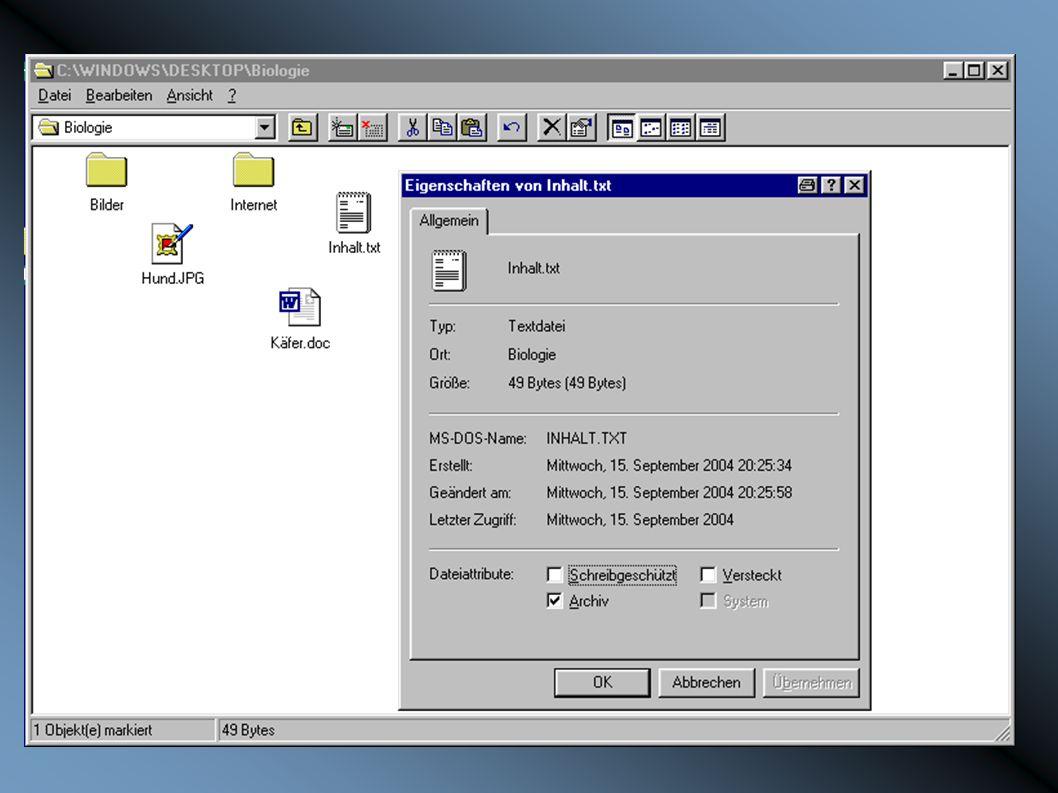 DATEI MSDOSName Pfad Typ Größe Erstelldatum Schreibgeschützt Symbol Inhalt...