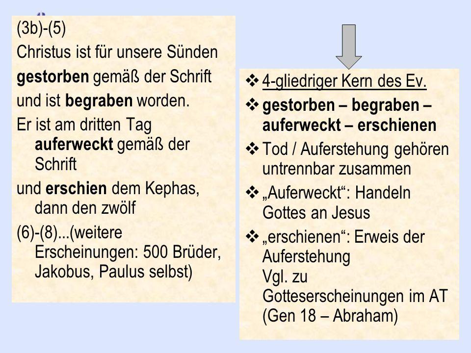 (3b)-(5) Christus ist für unsere Sünden gestorben gemäß der Schrift und ist begraben worden. Er ist am dritten Tag auferweckt gemäß der Schrift und er