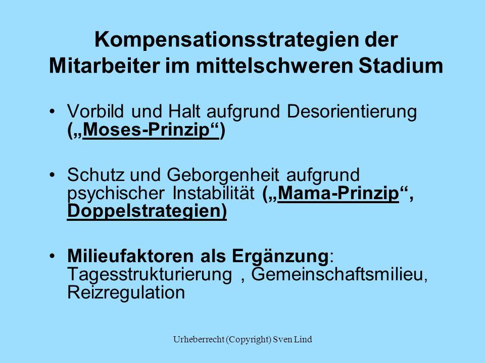 Kompensationsstrategien der Mitarbeiter im mittelschweren Stadium Vorbild und Halt aufgrund Desorientierung (Moses-Prinzip) Schutz und Geborgenheit au