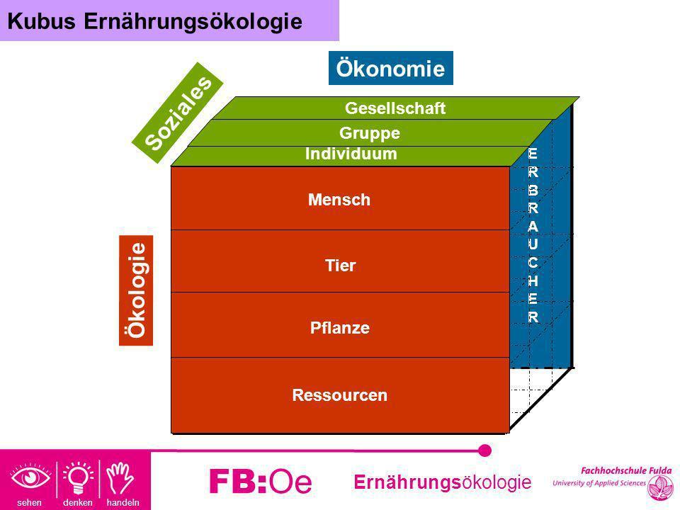 sehen denken handeln Ernährungsökologie FB:Oe Beispiel1: 1 Hamburger, 1x Pommes, 1 Milchshake Beispiel2: 1 Arg.