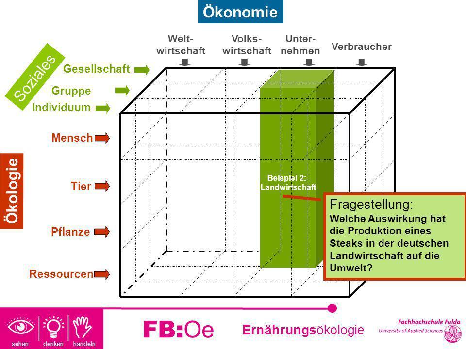 sehen denken handeln Ernährungsökologie FB:Oe Beispiel2: Wirtschaftsentwicklung Fragestellung: Wer konsumiert Steaks in Deutschland und welche Auswirkungen hat dies auf die wirtschaftliche Entwicklung und Umwelt.