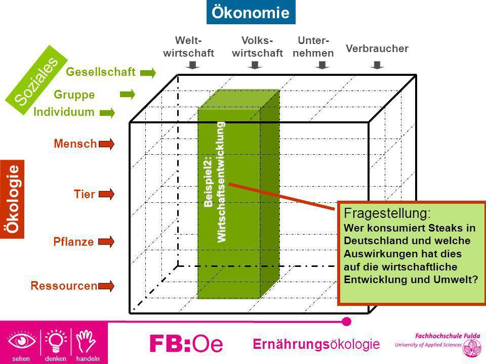 sehen denken handeln Ernährungsökologie FB:Oe Beispiel 2 Fragestellung: Welche Ressourcen werden durch den Konsum eines Steaks verbraucht und wie wirkt sich das auf die Wirtschaft in Deutschland aus.