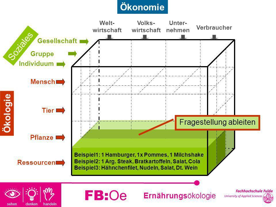 sehen denken handeln Ernährungsökologie FB:Oe Beispiel 2: Landwirtschaft Fragestellung: Welche Auswirkung hat die Produktion eines Steaks in der deutschen Landwirtschaft auf die Umwelt.