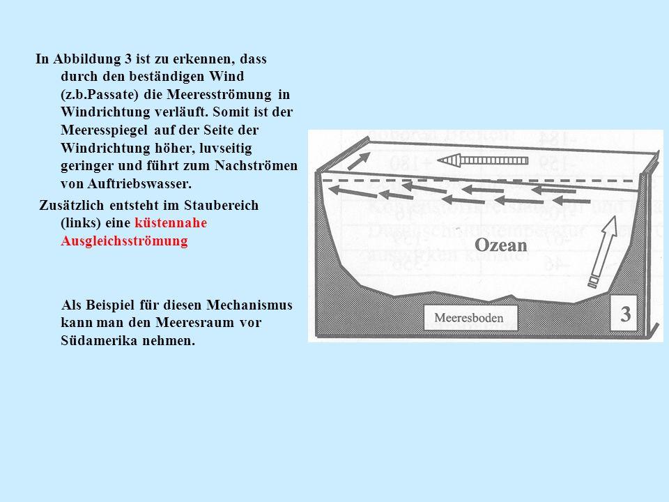 In Abbildung 3 ist zu erkennen, dass durch den beständigen Wind (z.b.Passate) die Meeresströmung in Windrichtung verläuft. Somit ist der Meeresspiegel