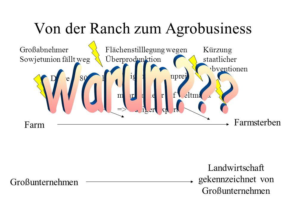 Von der Ranch zum Agrobusiness Farm Flächenstilllegung wegen Überprodunktion Steigende Bodenpreise mehr Anbieter auf Weltmarkt => weniger Export Großa