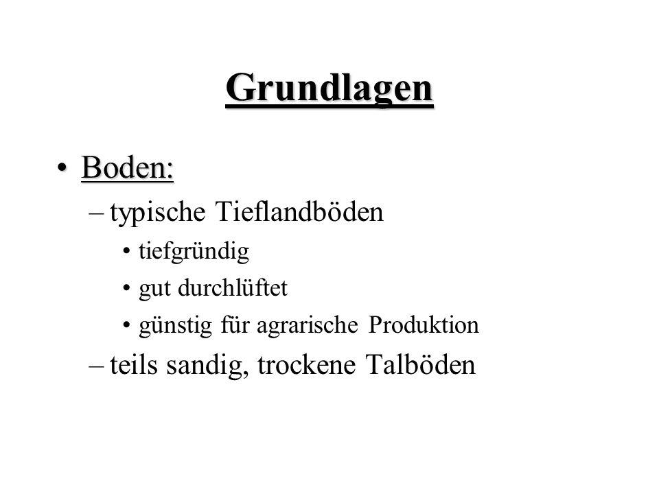 Grundlagen Boden:Boden: –typische Tieflandböden tiefgründig gut durchlüftet günstig für agrarische Produktion –teils sandig, trockene Talböden